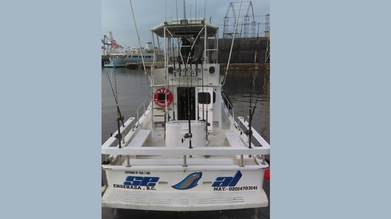 baja-california-sportfishing