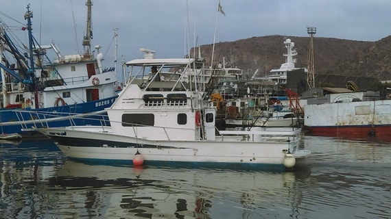 cheap-sportfishing ensenada