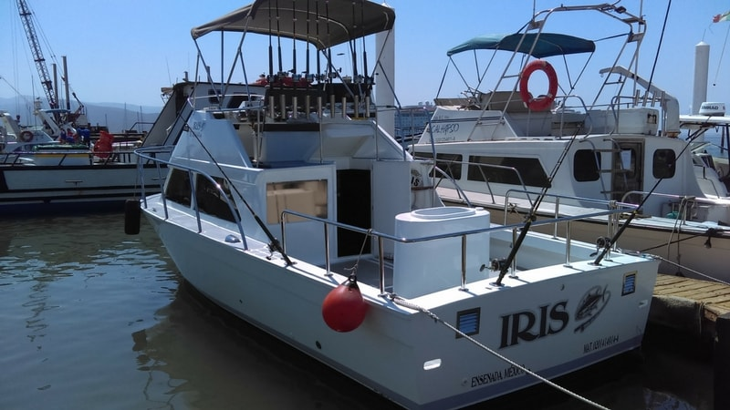 private-boat-fishing-rentals